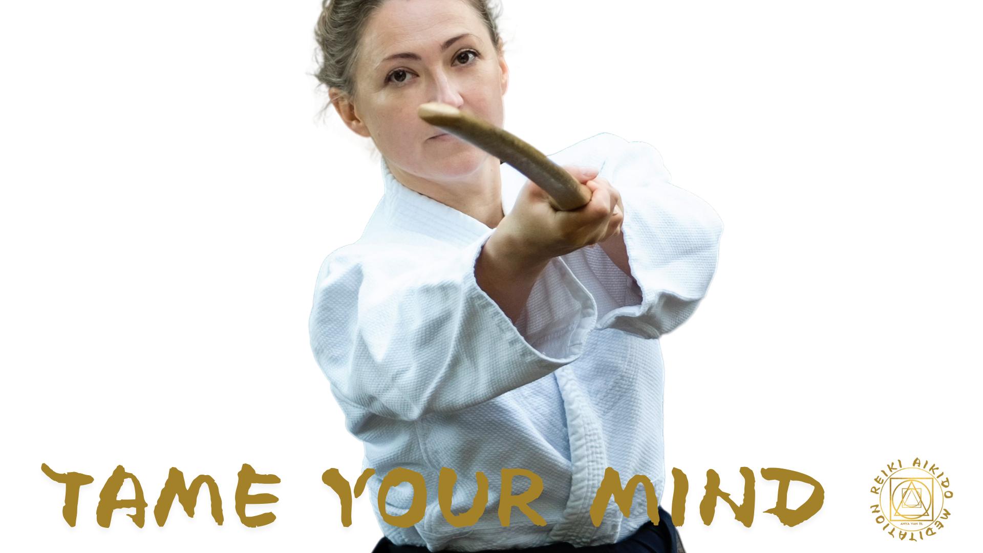 Reiki Aikido Meditation